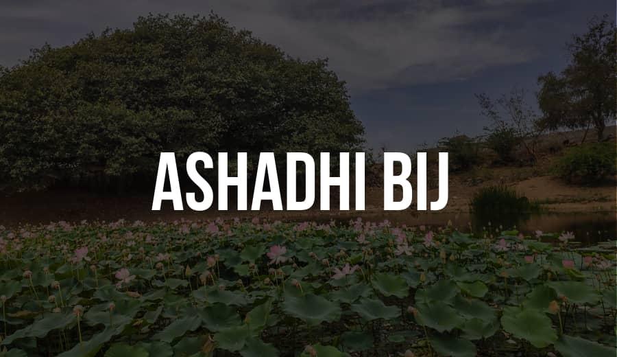 Ashadhi Bij 2020 | The History of Kutchi New Year | Since 1605