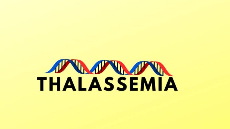 THE DEFINITIVE GUIDE TO THALASSEMIA