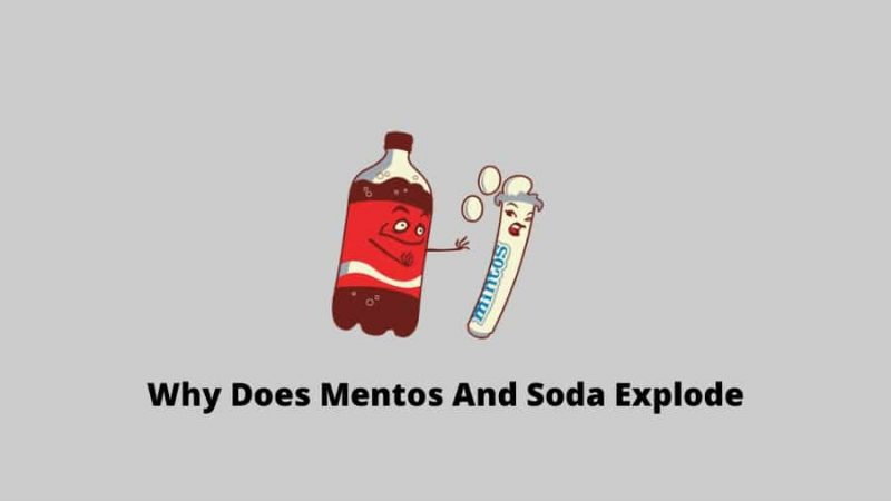 Why Does Mentos And Soda Explode Diet Coke and Mentos eruption Science
